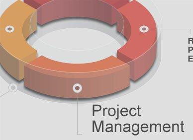 什么是项目质量管理